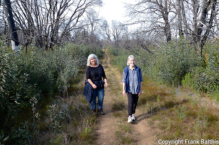 Women hiking in Bonny Doon Ecological Reserve