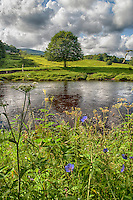 View of the River Hodder at Whitewell, Forest of Bowland, Lancashire.