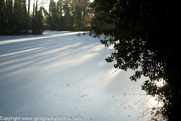 Frozen pond, Loam Ponds, Sutton, Suffolk, England