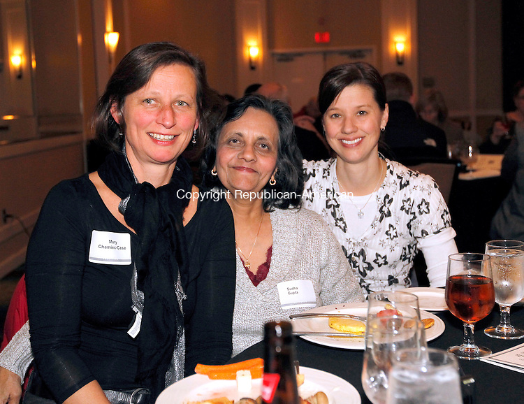 Waterbury, CT-30 November 2011-113011CM13-  SOCIAL MOMENTS Easter Seals Annual Meeting at the Courtyard by Marriott.  L-R are, Mary Chamiec-Case, Sudha Gupta and Lyn Wittmer from the Birth to Three and Autism Services.   Christopher Massa Republican-American