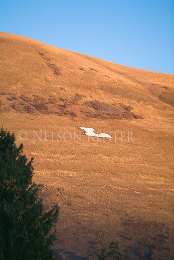 The letter L is on Mount Jumbo at Hellgate Canyon in the Missoula Valley