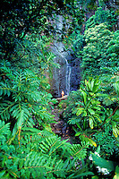 Woman on rock at Hana waterfall, Maui
