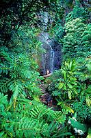 Woman on rock at Hana waterfall, Maui