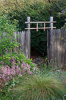 Entry through rustic gate in wooden fence; California native plants, Heath-Delaney garden