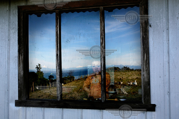 Miguel Peranchiguay looks out of a window inside his aunt's house on the island of Teuquelin. This lies off the coast of a larger island called Chiloe that is itself off southern Chile. The only inhabitants of Teuquelin are the Peranchiguay family whose descendants arrived there two hundred years ago. Now only a few elderly people, women and children live there. The men and youth have all left in search of work. Those left behind make a living by harvesting Luga, an algae that is used in the production of shampoo and nappies.