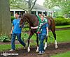 Makayla's Angel before The Delaware Oaks (gr 2) at Delaware Park on 7/13/13