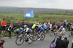 The breakaway group Jonathan McEvoy Madison Genesis, Dexter Gardias Bike Channel Canyon, Peter Williams One Pro Cycling, Gatis Smukulis Delko Marseille Provence KTM and Pieter Weening Roompot-Nederlandse Loterij in action during Stage 3 of the Tour de Yorkshire 2017 running 194.5km from Bradford/Fox Valley to Sheffield, England. 30th April 2017. <br /> Picture: ASO/P.Ballet | Cyclefile<br /> <br /> <br /> All photos usage must carry mandatory copyright credit (&copy; Cyclefile | ASO/P.Ballet)