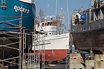 Port Townsend, Port of Port Townsend, Boat Haven Marina, shipyard, seiner, Evening Star, Jefferson County, Olympic Peninsula, Washington State, Pacific Northwest, USA,