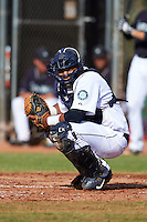 Seattle Mariners Ismerling Mota (32) during an instructional league intrasquad game on October 6, 2015 at the Peoria Sports Complex in Peoria, Arizona.  (Mike Janes/Four Seam Images)