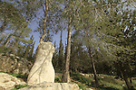 Israel, Shephelah, the Sculpture road in Tzora forest