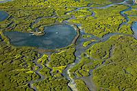 France, Gironde (33),Bassin d'Arcachon, l' île aux oiseaux  - vue aérienne //  France, Gironde, Bassin d'Arcachon, l' île aux oiseaux ( birds Island)  - aerial view
