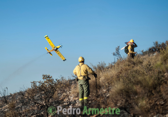 INFOCA Members of the brigade wildfires of Iznalloz and Puerto Lobo of Granada work to put out a wildfire in Bedar, in Almeria, on August 26, 2012.  AFP PHOTO / Pedro ARMESTRE