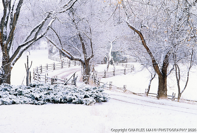A winter snowfall creates a dreamy scene at a ranch entrance north of Santa Fe, New Mexico