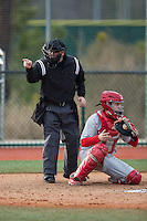 Home plate umpire Nathan Hamlett makes a strike call during the NCAA baseball game between the Cornell Big Red and the Seton Hall Pirates at The Ripken Experience on February 27, 2015 in Myrtle Beach, South Carolina.  The Pirates defeated the Big Red 3-0.  (Brian Westerholt/Four Seam Images)