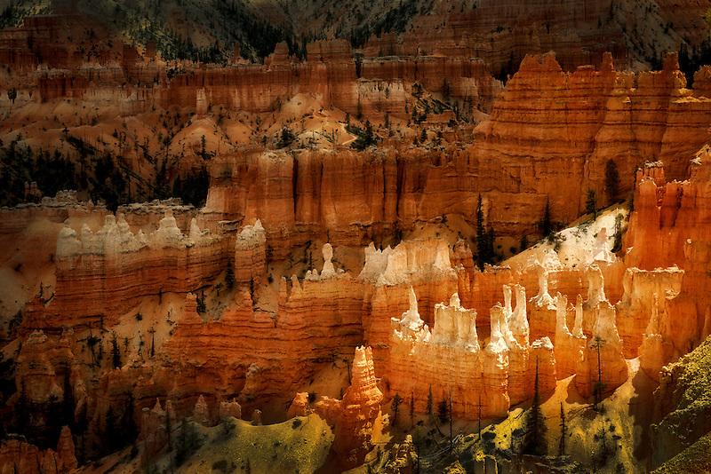 Hoodoos in Bryce National Park, Utah