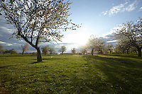 OR_LOCATION_45139