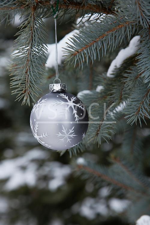 USA, Illinois, Metamora, Christmas ornament hanging from branch