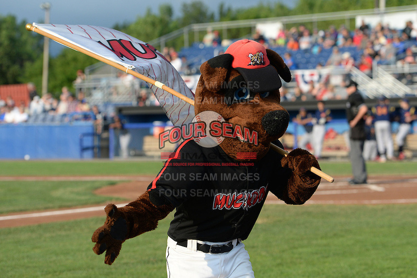 Batavia Muckdogs mascot Homer greets players as they run to the field before a game against the State College Spikes on July 3, 2014 at Dwyer Stadium in Batavia, New York.  State College defeated Batavia 7-1.  (Mike Janes/Four Seam Images)