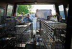 Julie Linford and Ray Zeeb pack empty traps back into Zeeb's truck after returning presiously trapped cats to their outside home areas in Antioch, California, on Saturday, March 22, 2014.  All of the cats have been spayed/neutered, vaccinated and ear tipped. Zeeb volunteers for H.A.R.P. (Homeless Animal Response Program) and Linford runs Outcast Cat Help of Martinez.  Photo/Victoria Sheridan