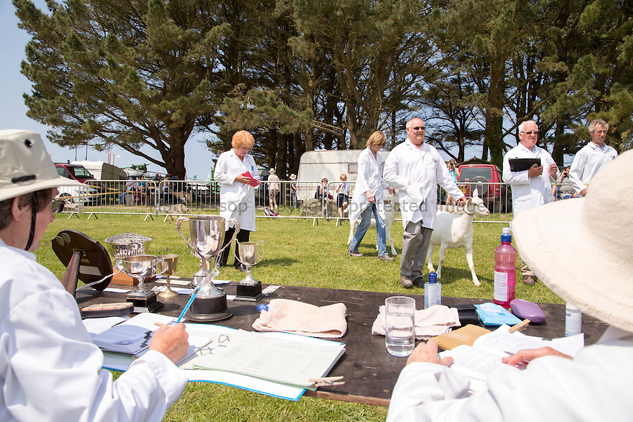 Judging The Royal Cornwall Show