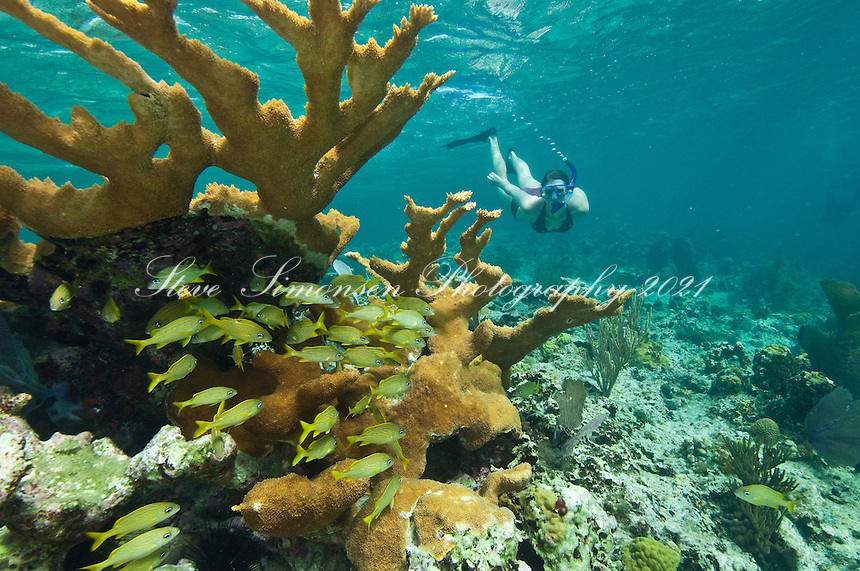 Julie Mozeika snorkeling<br /> Hawksnest Bay<br /> Virgin Islands National Park<br /> St. John, U.S. Virgin Islands