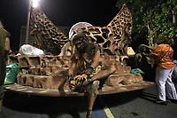Rio de Janeiro (RJ), 23/02/20 - Carnaval - Rio - Prepara (Foto: Ellan Lustosa/Codigo 19/Codigo 19)