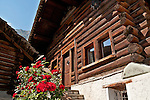 Houses with a log cabin feel and slate roofs in the small town of Viscoprano in the Swiss valley of Bregaglia
