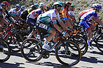 The peloton including Gregor Muhlberger (AUT) Bora-Hansgrohe take it easy during Stage 5 of Tour de France 2020, running 183km from Gap to Privas, France. 2nd September 2020.<br /> Picture: Bora-Hansgrohe/BettiniPhoto | Cyclefile<br /> All photos usage must carry mandatory copyright credit (© Cyclefile | Bora-Hansgrohe/BettiniPhoto