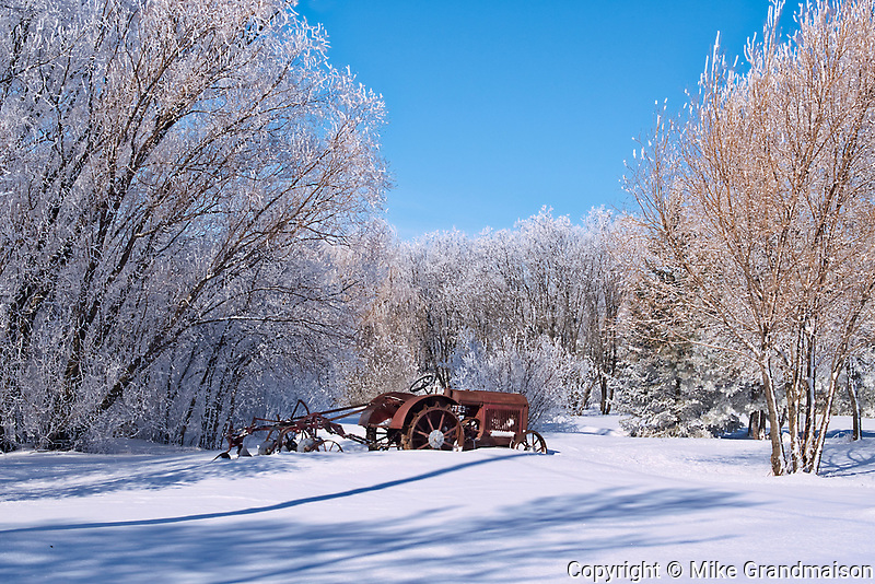 1937 McCormick Deering tractor with plough in a field surrounded by trees covered by heavy hoarfrost<br />