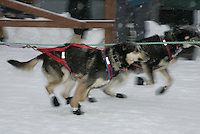 Jr. Iditarod Willow Lake  start / finish McKenzie Brooks