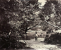 BNPS.co.uk (01202 558833)<br /> Pic: DominicWinterAuction/BNPS<br /> <br /> Incredibly rural scene by a brook.<br /> <br /> Revealed - A fascinating photo album from the very early days of British Hong Kong...long before the skyscrapers covered it over.<br /> <br /> The 150 year old photos of Hong Kong taken by one of the first British photographers to venture to the Far East have emerged for sale for £15,000.<br /> <br /> John Thomson, who was also a geographer, left Edinburgh for Singapore in 1862 and spent the following decade travelling the region.<br /> <br /> He explored a decidely low-rise Hong Kong from 1868 to 1870, taking numerous pictures of the rapidly expanding settlement and its industrious inhabitants.<br /> <br /> They capture the area, which is currently engulfed in unrest and protest, at a far more tranquil time.<br /> <br /> The photos are being sold with auction house Dominic Winter, of Cirencester, Gloucs.