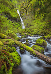 Oregon - Columbia River Gorge