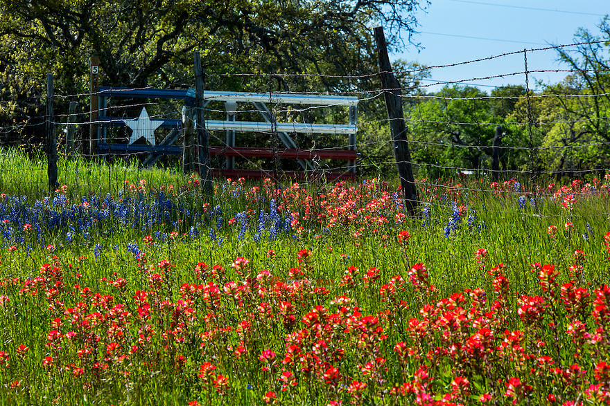 In this image, beautiful Indian Paintbrush and bluebonnets surround a Lone Star Texas flag fence gate near Lake Buchanan in the Texas Hill Country. Texans love the lone star, iconic symbol of the Texas flag - Stock Image