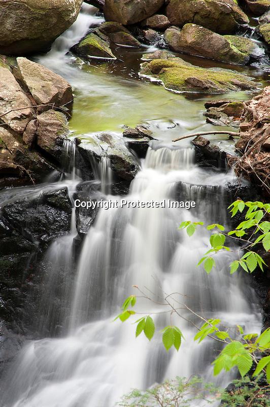 Cascading Fassett Brook NH