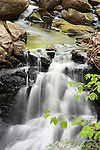 Cascading Fassett Brook NH