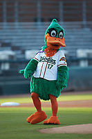 "Down East Wood Ducks mascot ""DEWD"" prior to the Carolina League game against the Winston-Salem Dash at Grainger Stadium Field on May 17, 2019 in Kinston, North Carolina. The Dash defeated the Wood Ducks 8-2. (Brian Westerholt/Four Seam Images)"