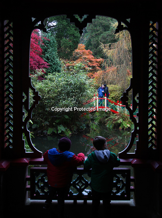 30/10/16<br /> <br /> Two boys look out from  the Japanese pagoda, while a couple share an intimate moment on the bridge.<br /> <br /> Many stunning trees are putting on a spectacular autumn display in the Chinese Garden at Biddulph Grange near Stoke on Trent, Staffordshire. Gardeners at the National Trust property are saying the frost-free autumn may have helped to make this one of the most colourful seasons in many years.<br /> <br /> <br /> All Rights Reserved F Stop Press Ltd. +44 (0)1773 550665