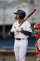 Princeton Rays designated hitter Wander Franco (6) at bat during the second game of a doubleheader against the Johnson City Cardinals on August 17, 2018 at Hunnicutt Field in Princeton, Virginia.  Princeton defeated Johnson City 12-1.  (Mike Janes/Four Seam Images)