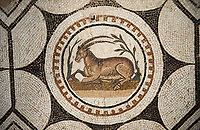Picture of a Roman mosaics design depicting  animals charmed by  music being played by Orpheus, from the ancient Roman city of Thysdrus, Bir Zid area. 2nd century AD. El Djem Archaeological Museum, El Djem, Tunisia.
