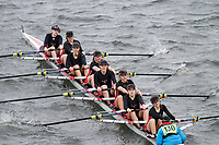 Crew: 130  Lady E Holles  Event: Girls CHAMP eights<br /> <br /> Schools' Head of the River 2017<br /> <br /> To purchase this photo, or to see pricing information for Prints and Downloads, click the blue 'Add to Cart' button at the top-right of the page.