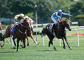 July 25 Jonathan Kiser Memorial Novice Stakes - Martini Brother
