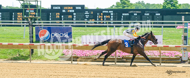 Seal Team Four winning at Delaware Park on 7/11/15