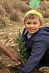 Israel, trees planting on Tu B'shvat holiday in Modiin