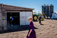 CAPULIN, MEXICO - OCTOBER 31: The Mexican Mennonite family of Johan Giesbrecht, do their chores on their farm on the 31st of October, 2015 in Capulin, Mexico. <br /> <br /> Daniel Berehulak for The New York Times