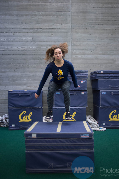 19 NOV 2014:  Campus Life photographs at the University of California in Berkeley, CA for NCAA Champion Magazine.  Jamie Schwaberow/NCAA Photos