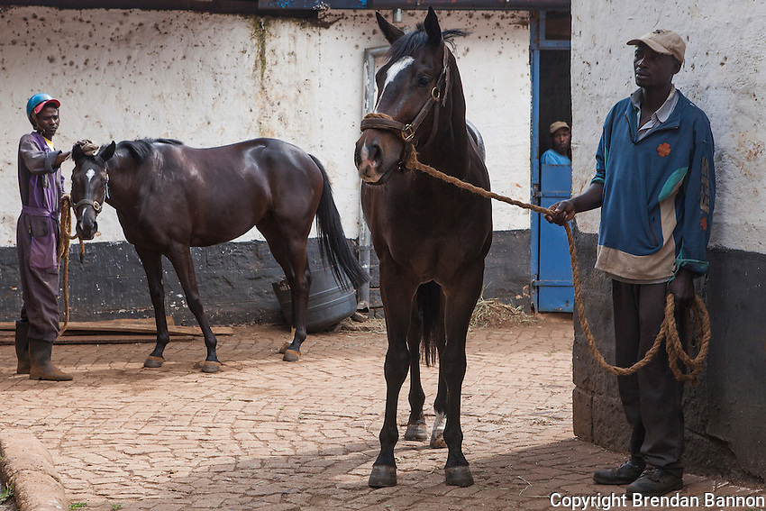 Syces waited to water and wash  horses after morning  exercises at Ngong Racecourse in Nairobi, Kenya. March 13, 2013. Photo: Brendan Bannon