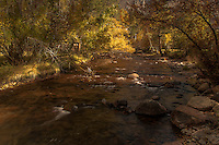 Zion National Park at Fall