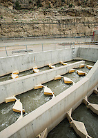 A fish ladder at the Grand Valley Diversion Dam along the Colorado River near Grand Junction, Colorado, Sunday, July 5, 2015. The dam is a 14-foot high, 546-foot long concrete roller dam with six gates, which were the first and largest of their kind to be installed in the United States. The dam is primarily used for irrigation for the Grand Valley. <br /> <br /> Photo by Matt Nager