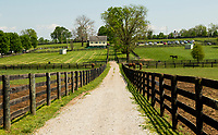 GEORGETOWN, KENTUCKY, MAY 06: 14th Annual Fundraiser at Old Friends Farm on May 6, 2018 in Georetown, Kentucky. (Photo by Sue Kawczynski/Eclipse Sportswire/Getty Images)