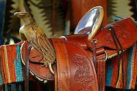 Handmade Hawaiian saddle with carved design